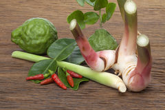 Spicy thai herb. Spices for cooking Thai food tom yam Stock Images