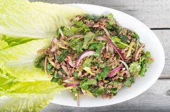 Free Spicy Thai Minced Beef Salad Royalty Free Stock Image - 69227076