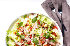 Spicy thai salad with beef and green herbs Royalty Free Stock Image