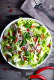 Spicy thai salad with beef and green herbs Royalty Free Stock Photos