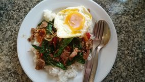 Spicy Thaifood. Kaprow nua with rice Stock Image