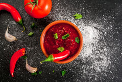 Spicy tomato sauce. With chili pepper, salt and herbs. View from above. Against the background of ingredients Royalty Free Stock Images