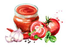 Spicy Tomato sauce with tomatoes, garlic, chili, black pepper and Basil. Watercolor hand drawn illustration, isolated on white bac. Kground stock illustration