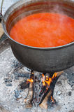 Spicy tomato soup on fire Stock Photography