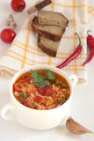 Spicy tomato soup with rice Royalty Free Stock Photography