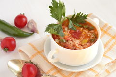 Spicy tomato soup Royalty Free Stock Photos
