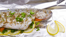 Spicy trout Royalty Free Stock Image
