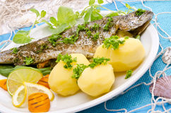 Spicy trout Stock Image