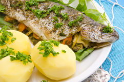Spicy trout Royalty Free Stock Photography