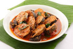Spicy Tuna fish curry . Stock Images