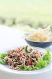 Spicy tuna salad Royalty Free Stock Photography
