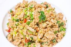 Spicy tuna salad Stock Photos