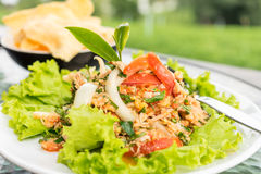 Spicy tuna salad Stock Images
