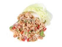 Spicy Tuna Salad on white Royalty Free Stock Photos