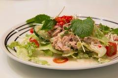 Spicy Tuna Salad Stock Image