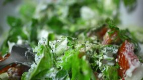 Spicy vegetable salad ready. Macro video Royalty Free Stock Image