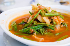 Spicy vegetable soup Royalty Free Stock Photo