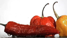 Spicy vegetables in super slow motion being wet stock footage