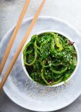 Spicy wakame salad. Wakame salad garnished with sesame seeds and chopped chili Stock Image