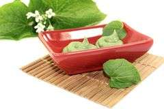 Spicy Wasabi with leaf and blossom Stock Image