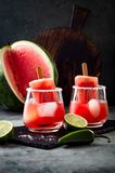 Spicy watermelon popsicle margarita cocktail with jalapeno and lime. Mexican alcoholic drink for Cinco de mayo party. Spicy watermelon popsicle margarita royalty free stock images