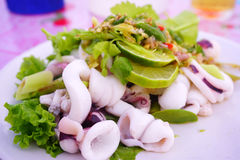 Spicy yum squid salads. Royalty Free Stock Photos