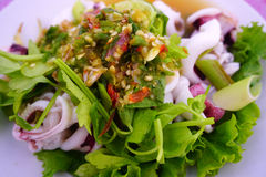 Spicy yum squid salads. Royalty Free Stock Photography