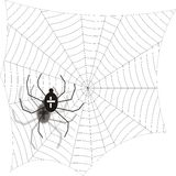 Spider. Web, drawing Royalty Free Stock Image