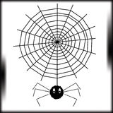 The spider Stock Photography