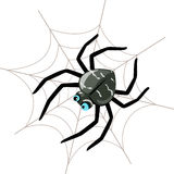 Spider stock illustration