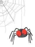 Spider stock illustration