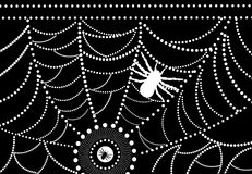 Spider. Wait for the food already waiting for child  generated by illustrator Stock Photography