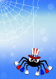 Spider with American shoes Stock Images