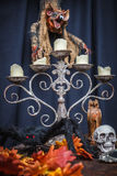 Spider, autumn oak leaves, chandelier, totem skull and vampire. Halloween Stock Photo