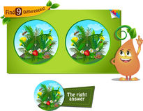 Spider, bee 9 differences. Visual game for children and adults. Task to find 9 differences in the summer illustration  with  forest insects Royalty Free Stock Photos