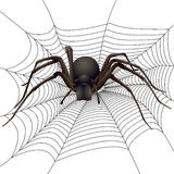 Spider. Big spider in the web. Vector illustration Royalty Free Stock Photos