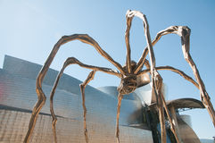 Spider In Bilbao Royalty Free Stock Images