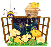 Spider, bird house and window Royalty Free Stock Photos