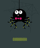 Spider with a bow A Royalty Free Stock Photography