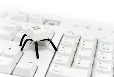 Spider button Royalty Free Stock Image