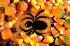 Spider Candy Stock Images