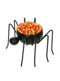 Spider with Candy Royalty Free Stock Photos