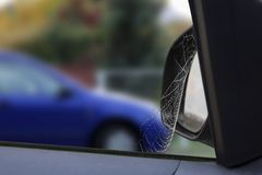 Spider Car. Spider web on the rearview mirror cars after rain Stock Photos