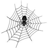Spider in a Cobweb. Illustration of a spider in a cobweb Stock Photos