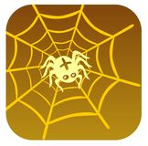 Spider and cobweb Stock Photography