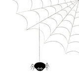 SPIDER AND COBWEB. Spider hanging from a cobweb stock illustration