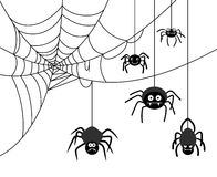 Spider on cobweb. Spiders weave a cobwebs. Dangerous insect, spider webs. Vector illustration Royalty Free Stock Image