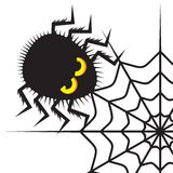Spider and cobweb. Vector illustrations of the Spider and cobweb Royalty Free Stock Photography