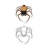 Spider color and outline Stock Images