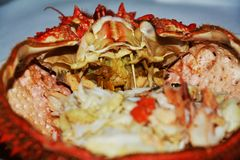 Spider crab food, fish background, close up Stock Images